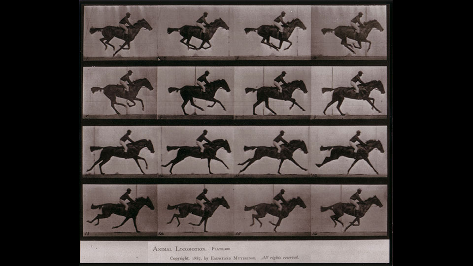 Horse in Motion (1872)